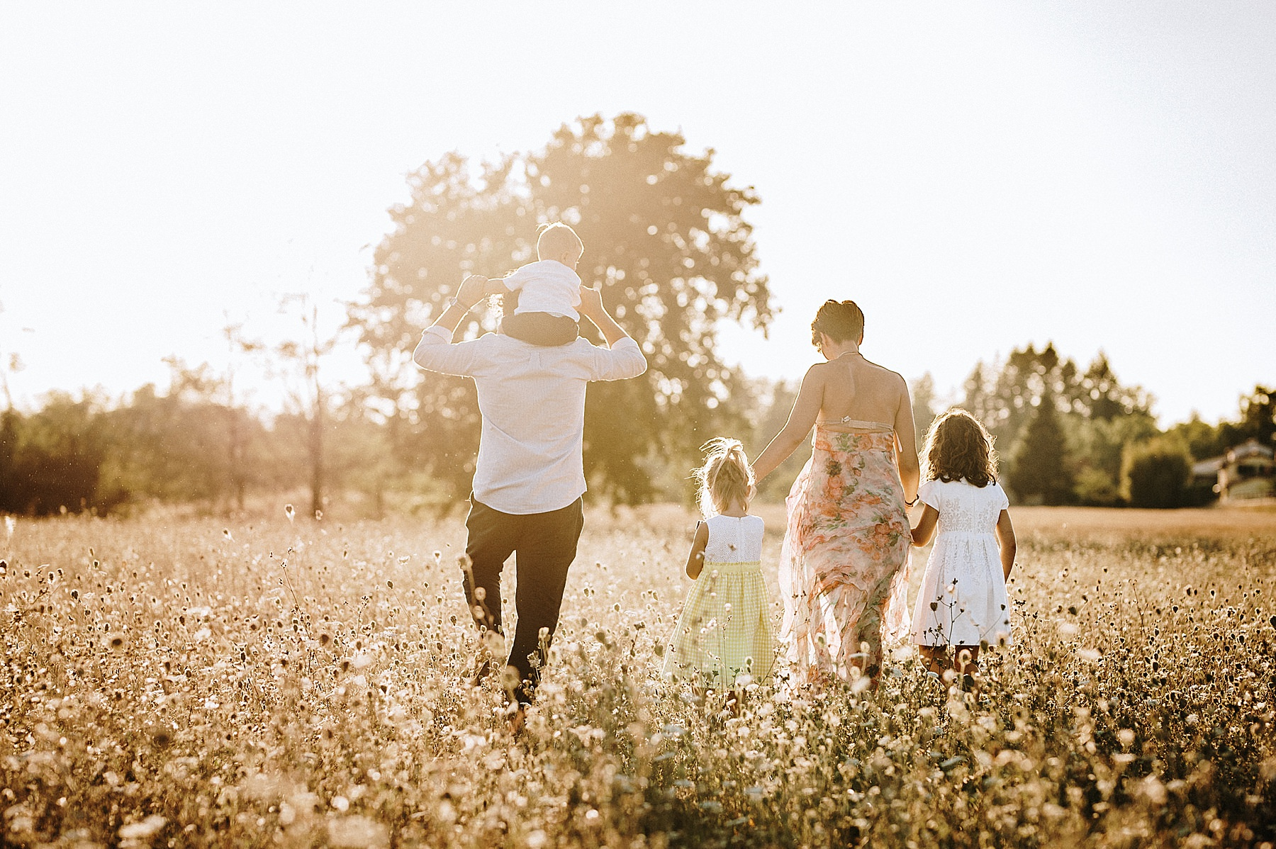 Servizio fotografico di famiglia nel Mugello all'aperto nei campi
