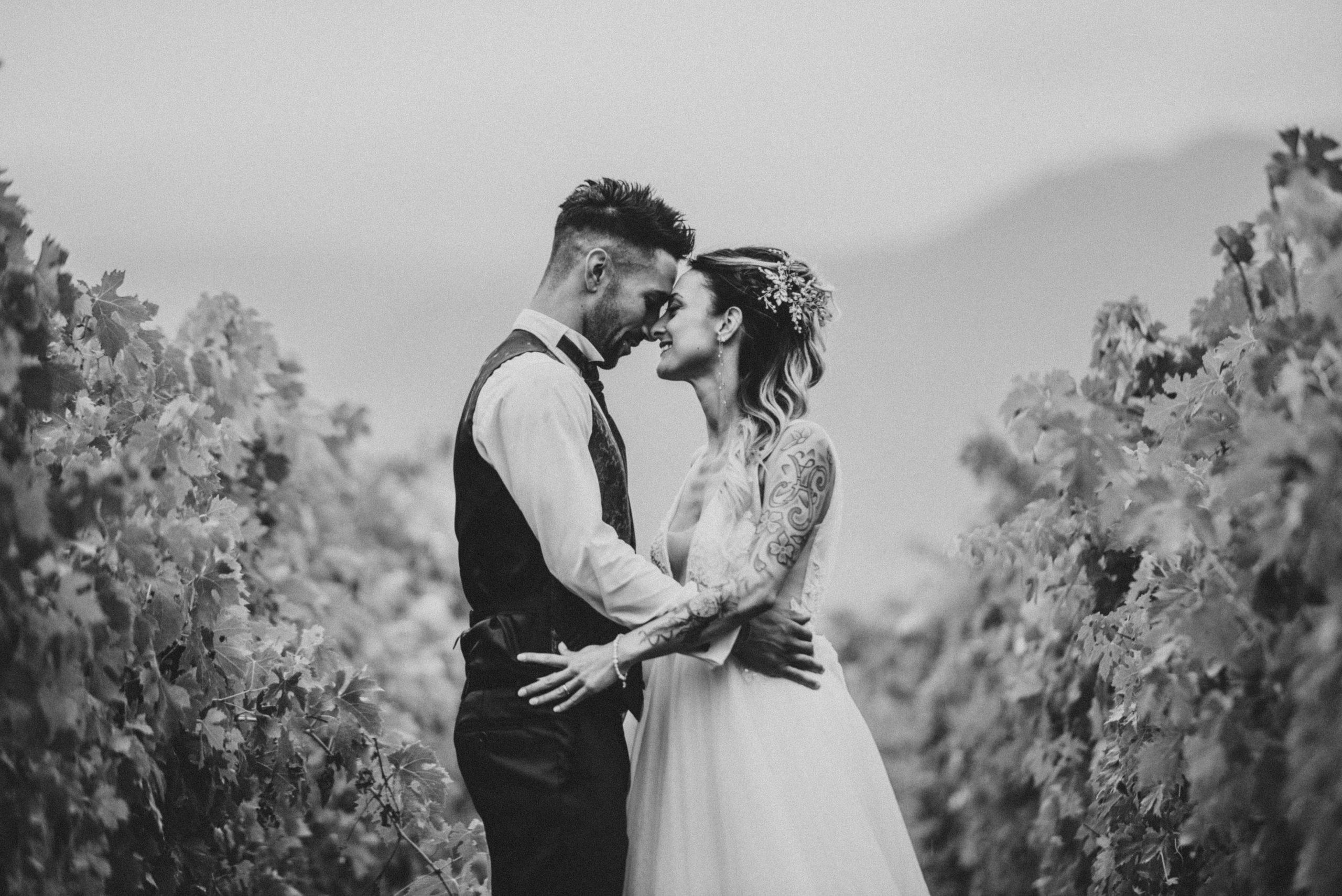 foto sposi in bianco e nero in un filare di viti in Mugello