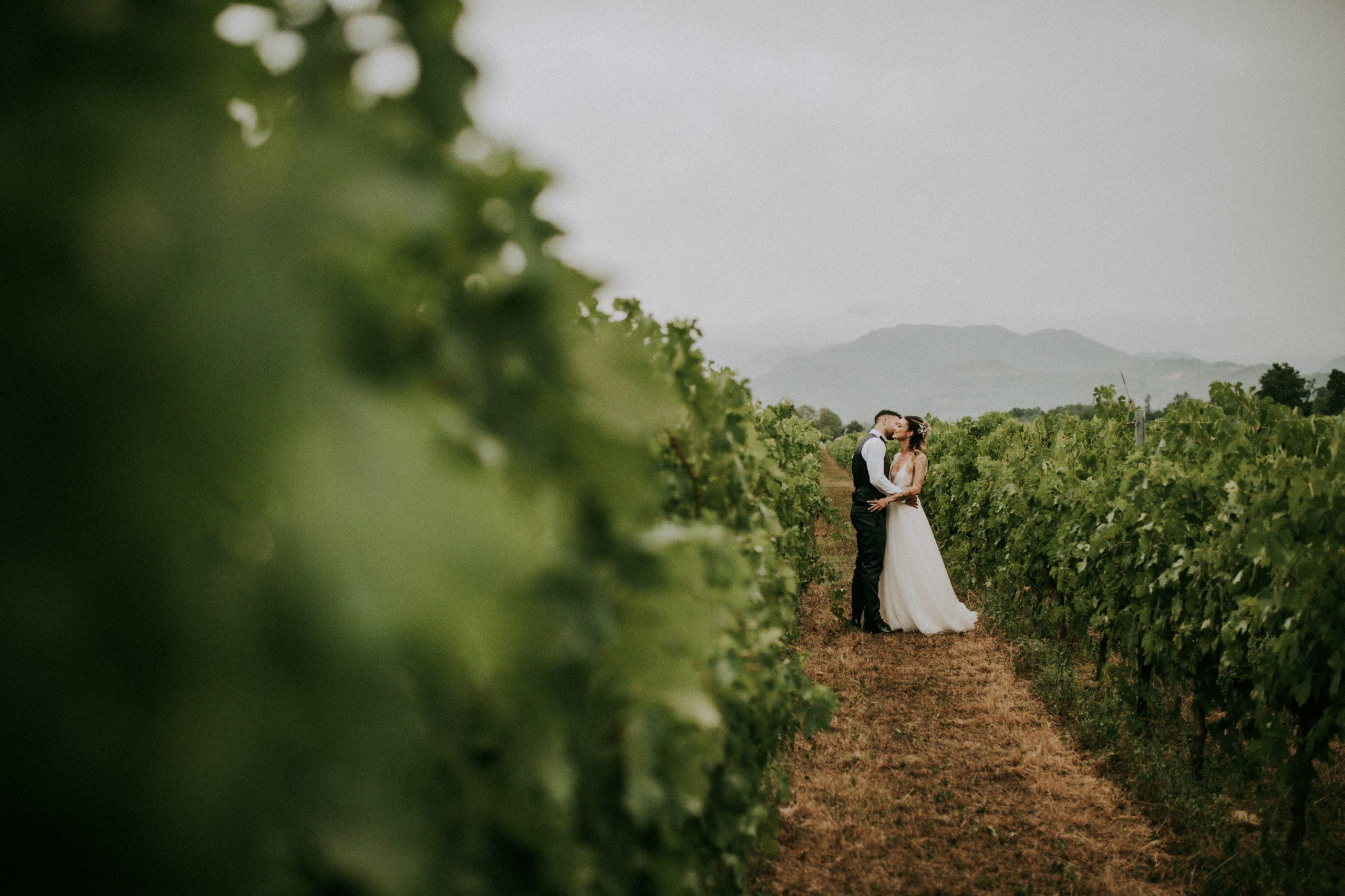 sposi nel filare di viti di Villa di Corte a Borgo San Lorenzo