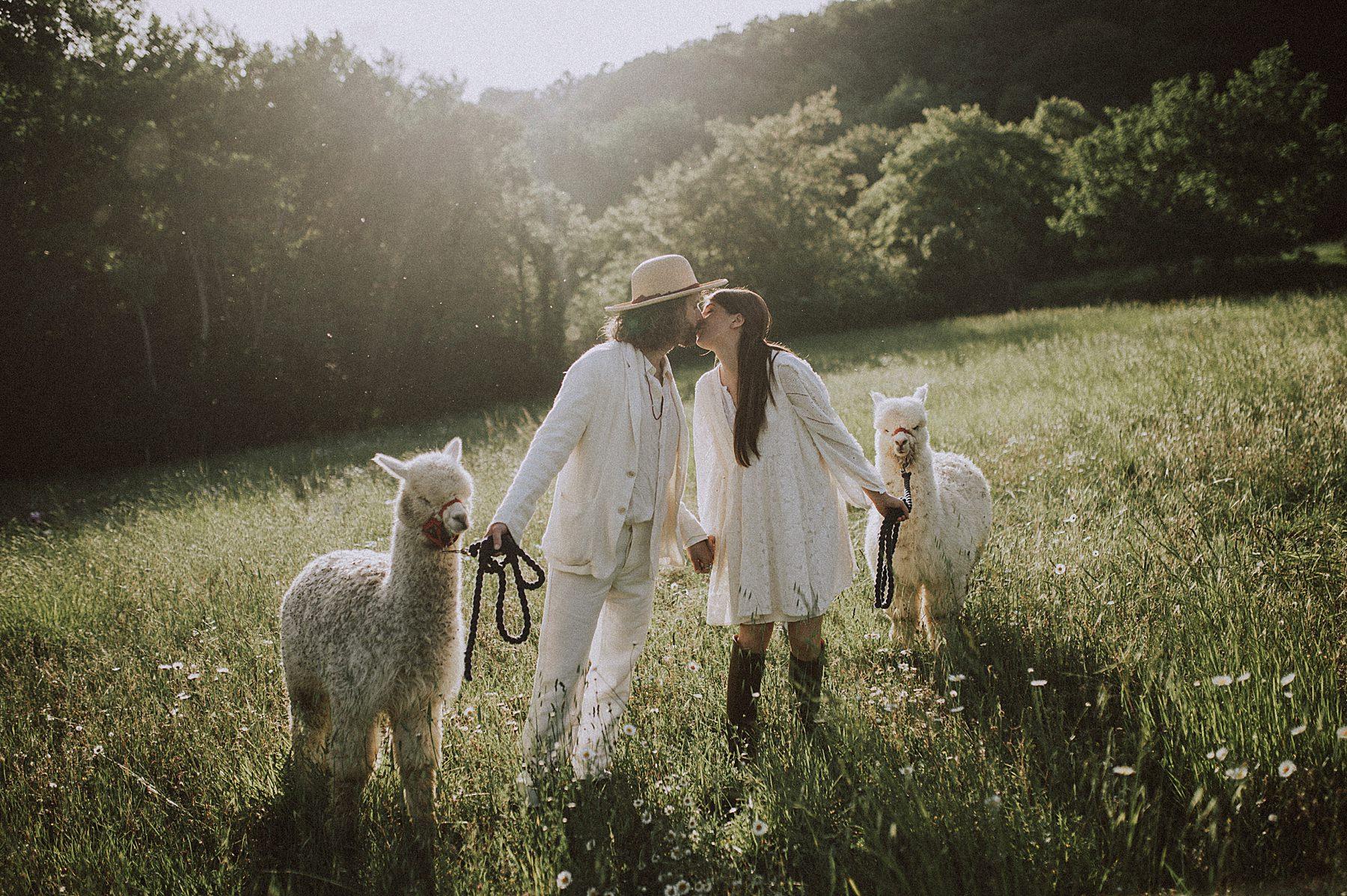 Bellissimo servizio di coppia pre-matrimonio con gli alpaca